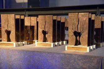 Wierzba 2015 - wręczenie nagród