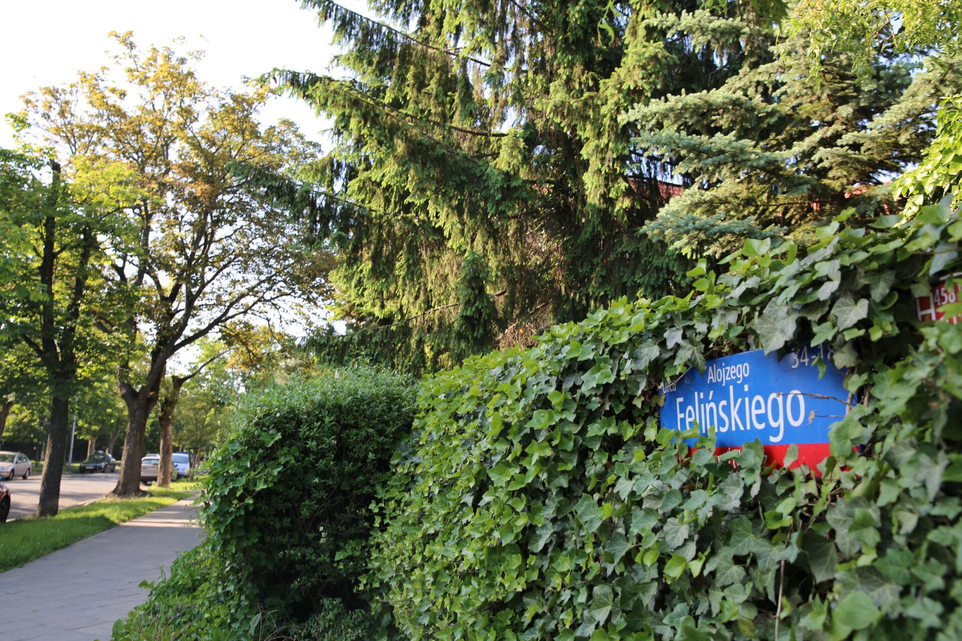 Zdjęcie nazewnątrz. Płot porośnięty roślinami, widoczna jedynie tabliczka znazwą ulicy Alojzego Felińskiego.