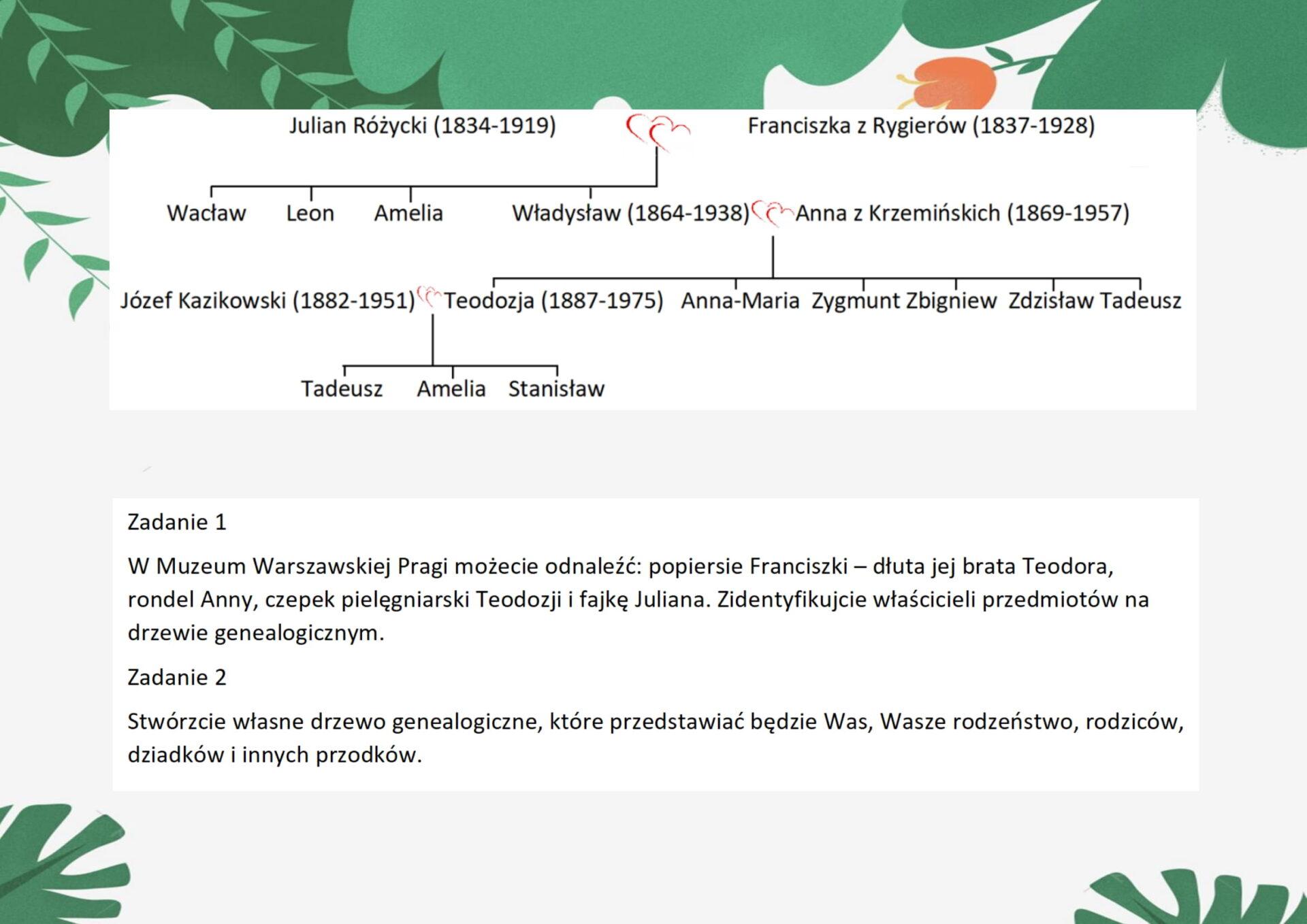Grafika przedstawiająca drzewo genealogiczne Różyckich.