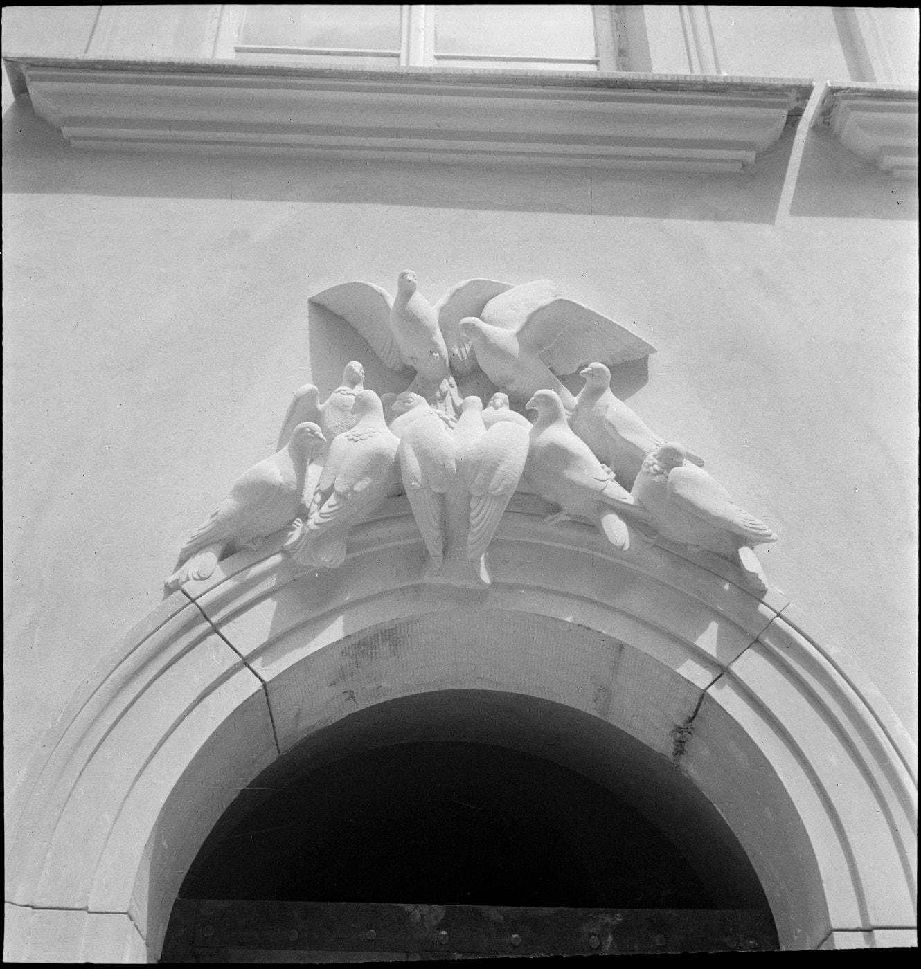 Fotografia czarno biała. Fragment zwieńczenia portalu nadwejściem dokamienicy. Ozdobiony rzeźbionymi gołębiami.