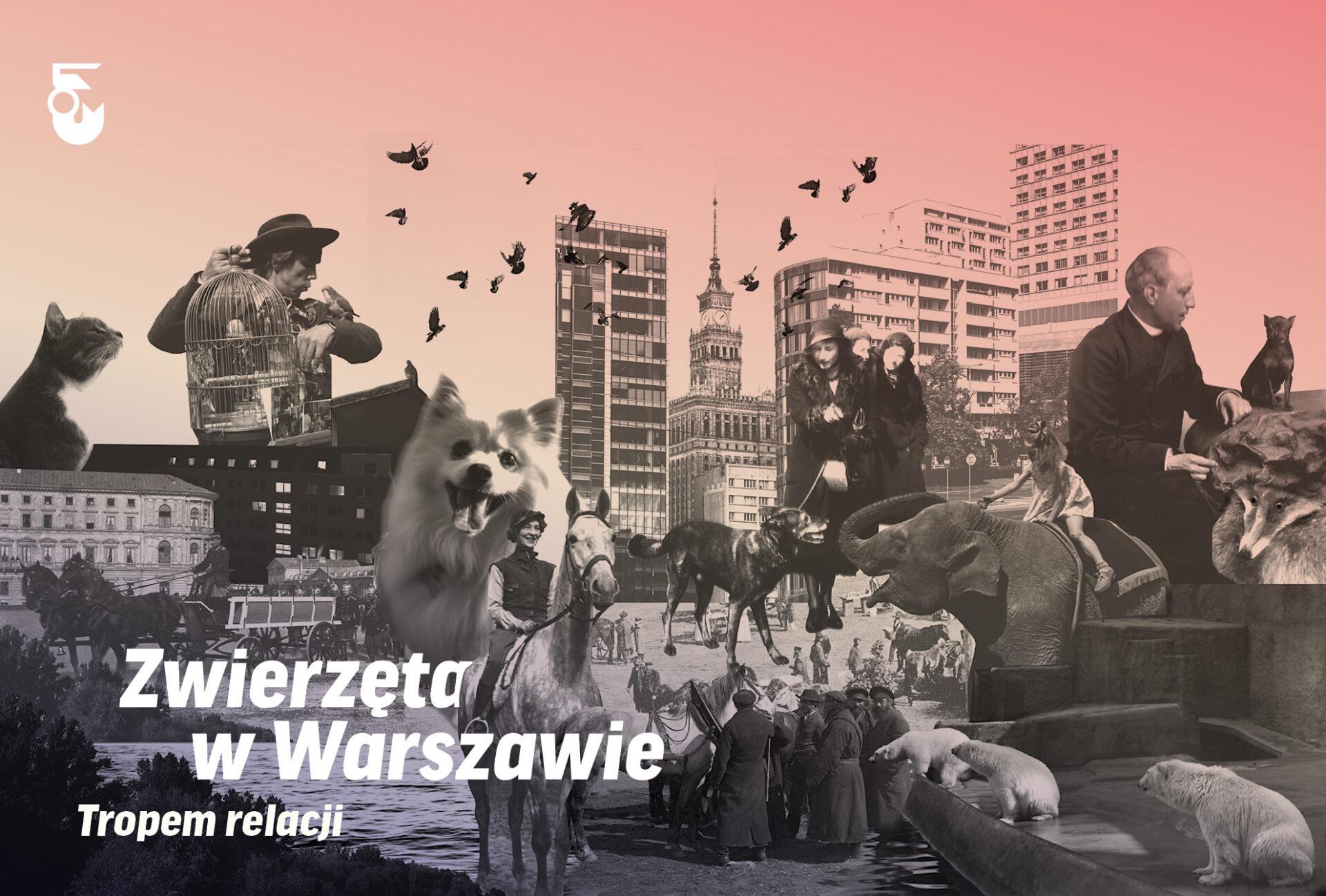 Warszawa zwierzęca. Warsztaty dla rodzin