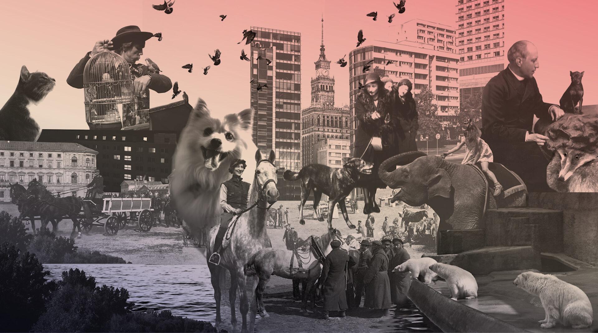 Zwierzęta w Warszawie. Na tropie relacji nowa wystawa