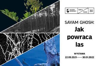 Zapowiedź nowej wystawy: Sayam Ghosh: Jak powraca las